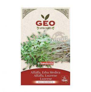 GEO Alfalfafrö – ekologiskt groddfrö