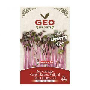 GEO Rödkålsfrön – ekologiskt groddfrö