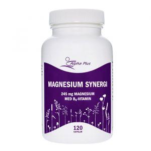 Magnesium Synergi, 120 kapslar
