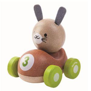 Bil med Kanin
