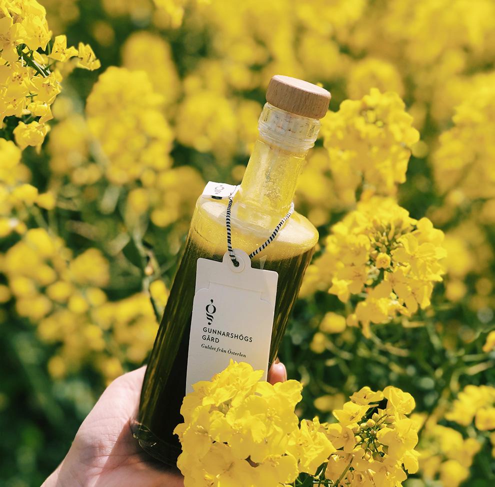 Bild på en flaska med rapsolja i ett rapsfält
